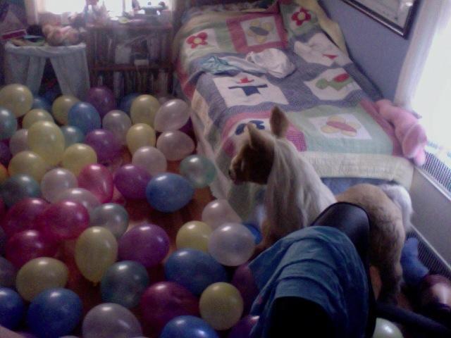 balloonfairy.jpg